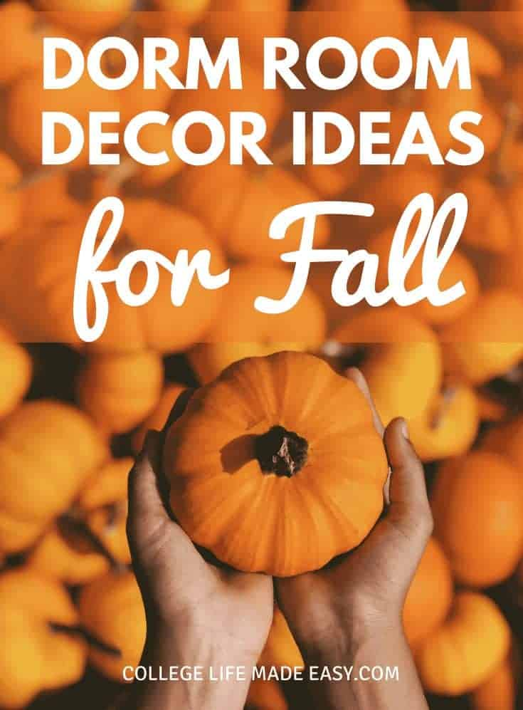 10 College Decorations That Will Get Your Dorm Room Ready for Fall