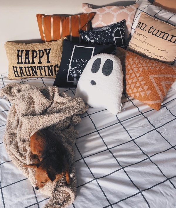 Halloween decorated orange and ghost shaped pillow on bedroom